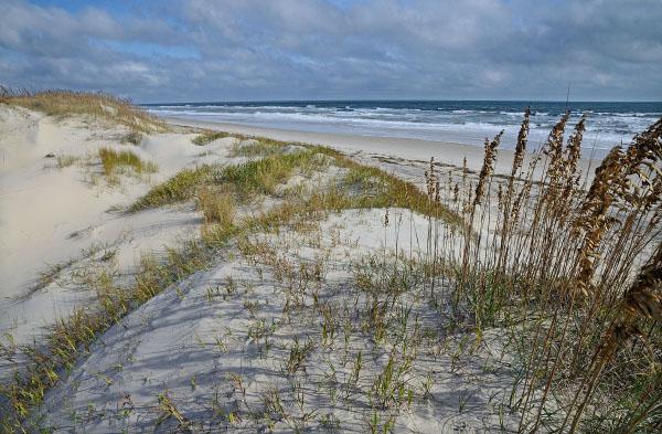 expédition de baisse offres exclusives prix bas False Cape Natural Area Preserve