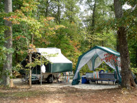 Typical campsite at James River State Park.