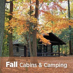 Cabins are economical