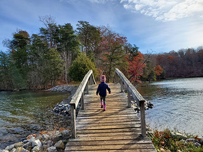 Hike to Turtle Island at Smith Mountain Lake State Park